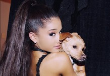 Ariana Grande Haare Frisur