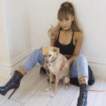 Ariana Grande Tour 2017
