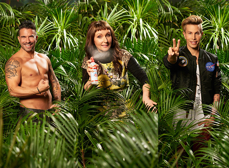Dschungel Camp Gewinner