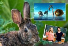 Ostern 2017 Das TV Programm auf einen Blick